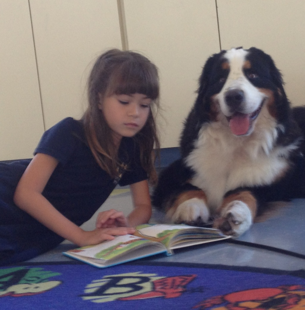 Rose Lesniak Dog Trainer Miami fl working with the Miami Beach Library teaching kids to read to dogs